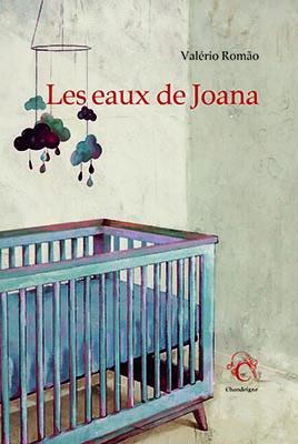Librairie Quai des Brumes – Mardi 24 septembre à 19h – Rencontre avec Valério Romão autour des «Eaux de Joana»